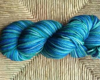 Dwalin - Hand Dyed Yarn - 100g Skein