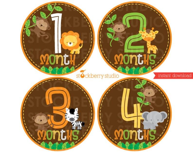 Safari Animals Baby Monthly Milestone Stickers Transfer image 0