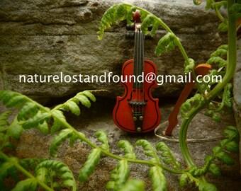 Fiddle Music.