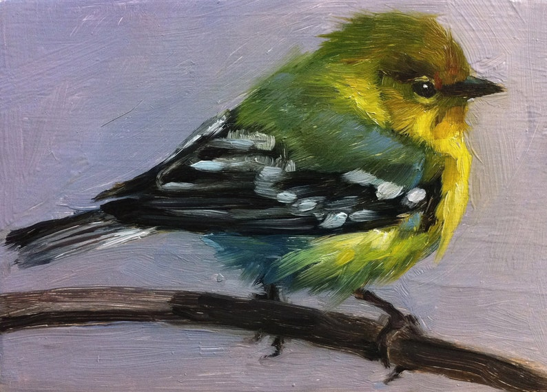 Tiny Pine Warbler  Little Bird Painting  Open Edition Print image 0