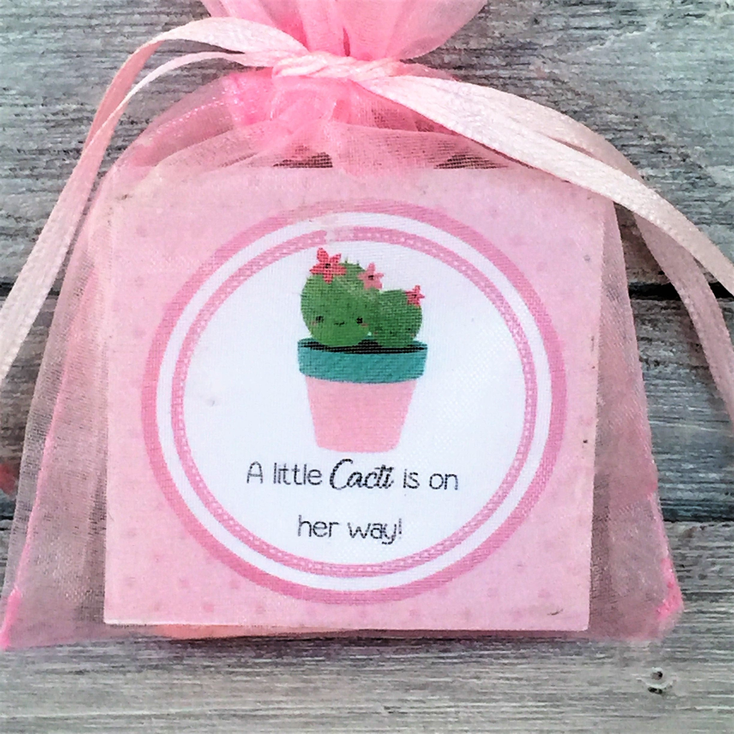Cactus Soap Favors: Baby Shower Favors Birthday Favors Baby | Etsy