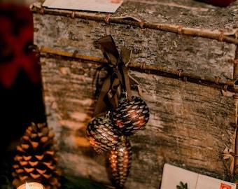 Birch Bark Wedding Card Box - Bride and Groom Advise Box - Rustic Birch Bark Trunk - Woodland - Rustic Barn – Elegant Winter Holiday Wedding