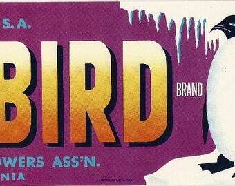 Polar Bird Vintage Crate Label, 1930s
