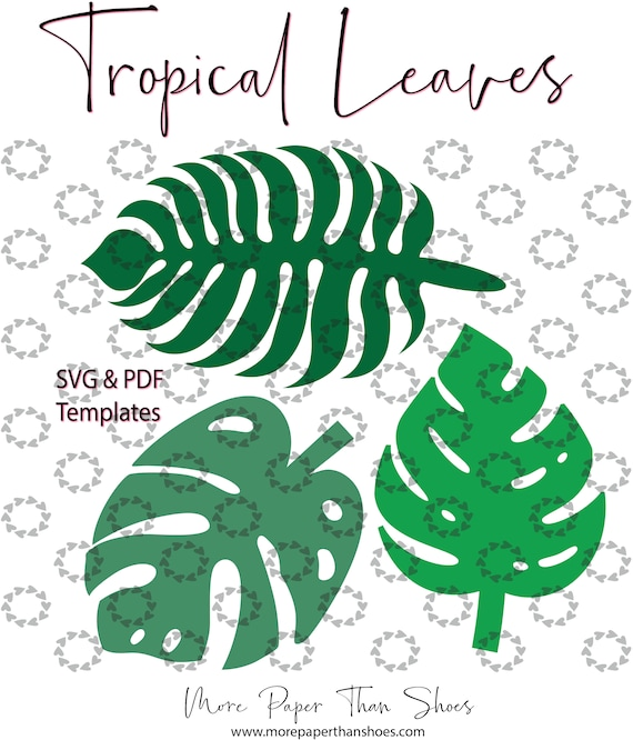 Large Paper Leaf Templates Leaf Svg Cut Files Paper Leaves Svg And Pdf Templates Tropical Leaves Palm Leaves Cricut Laser Cutter