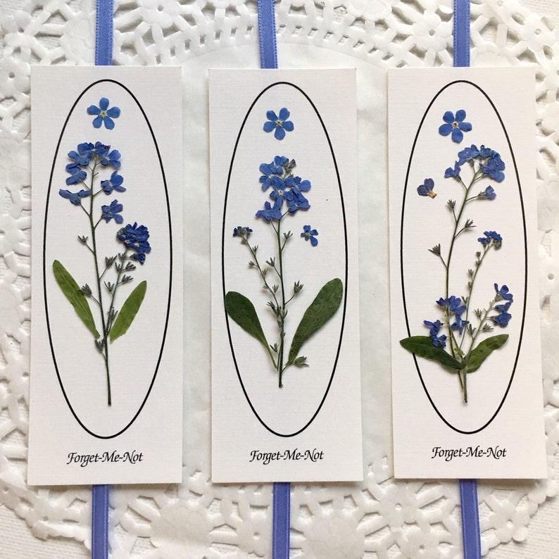 Bookmarks Forget Me Not Flower Book Markers Blue Flowers On White Paper Book Marks For Book Readers Pressed Flower Art Gifts