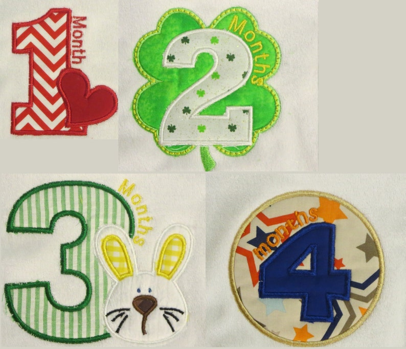 Bib for every month  12 bibs image 0