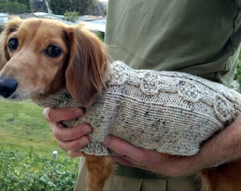 Pdf Download Knit Pattern For Miniature Dachshund Dog Sweater Etsy