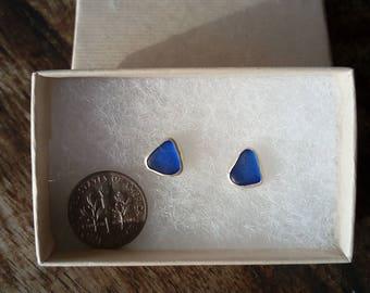 Cobalt Blue Sea Glass Stud Earrings (A)