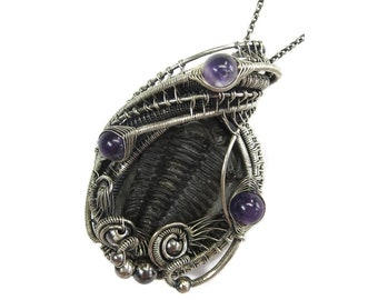 Trilobite Fossil Pendant with Amethyst, Calymene niagarensis Wire Wrap