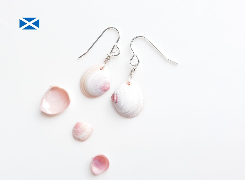 Scottish Venus Shell earrings   Scot10 from Seaham  UK image 0
