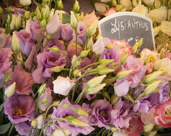 Flower photo - French Lysianthus - Paris Flower Market - France - wild and free as Monet's garden - lilac, lemon, green