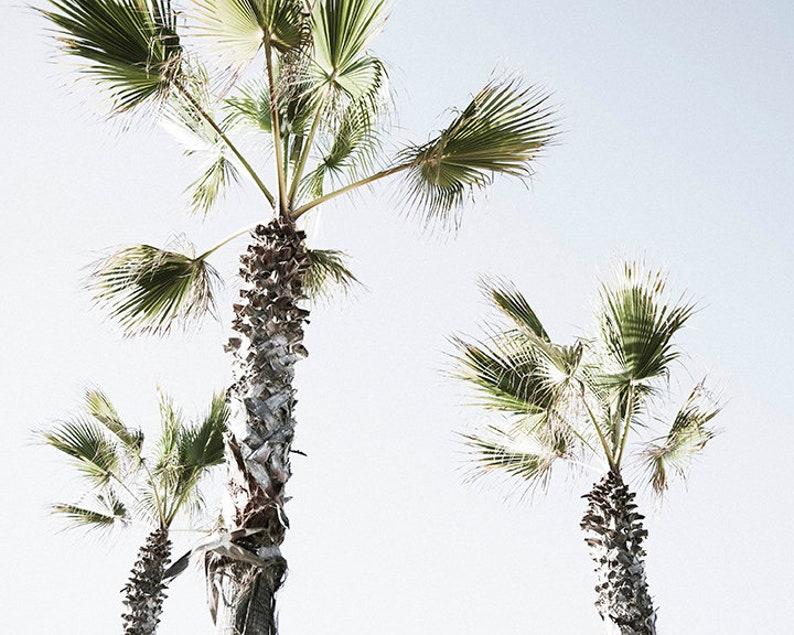 California Decor CA Wall Art Print Beach Decor Palm Print image 0