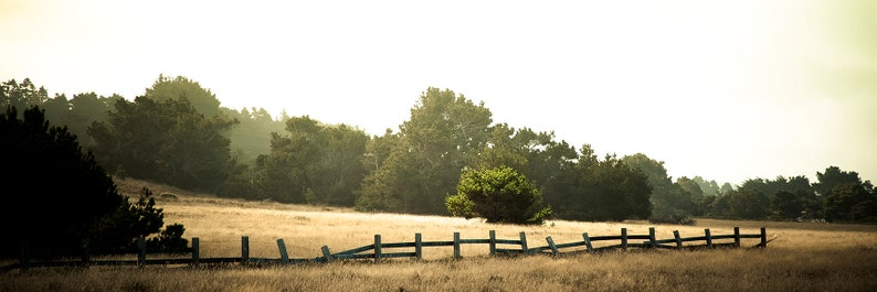 Panoramic Landscape  The Healing Field  forests n fields of image 0