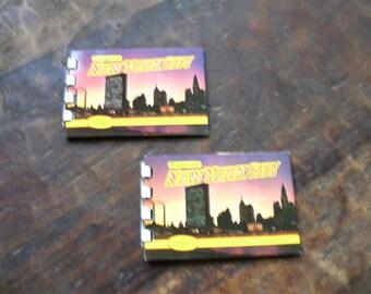 Souvenir of New York City 10 Plastichrome Views