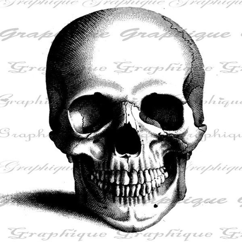 Digital Collage Sheet Halloween Burlap Digital Download Skull Front Anatomy Fabric Transfer Iron On Pillows Tote Bags Tea Towels No 1139