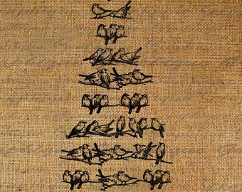 Birds On Wire Line Bird Tree Digital Image Download Transfer To Pillows Tote Tea Towels Burlap No. 1983
