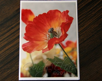 Red-fire colored-Poppies-Blank note card- greeting card-flowers-nature-garden-photography-print-photo