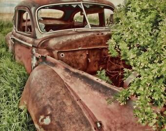 Hidden Gem 12x18 Fine Art Photo