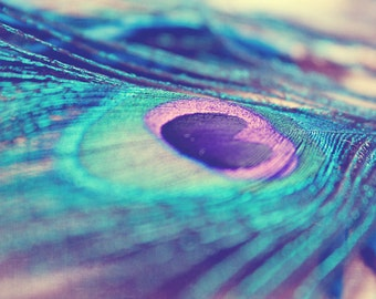 Peacock feather: A Little Glimmer Fine Art Photography, Still life Photography, Turquoise Blue Purple Green peacock print