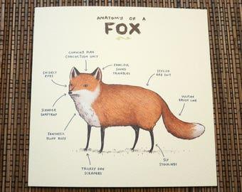 Anatomy Of A Fox Card