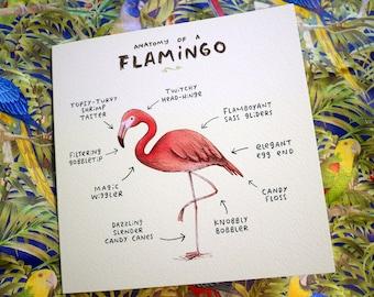 Anatomy Of A Flamingo Card
