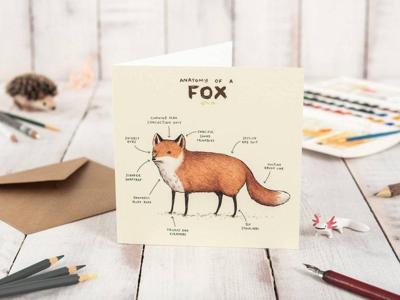 Anatomy Of A Fox Card image 0