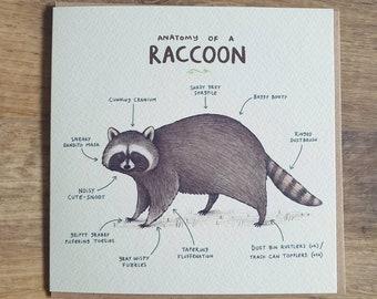 Anatomy Of A Raccoon Card