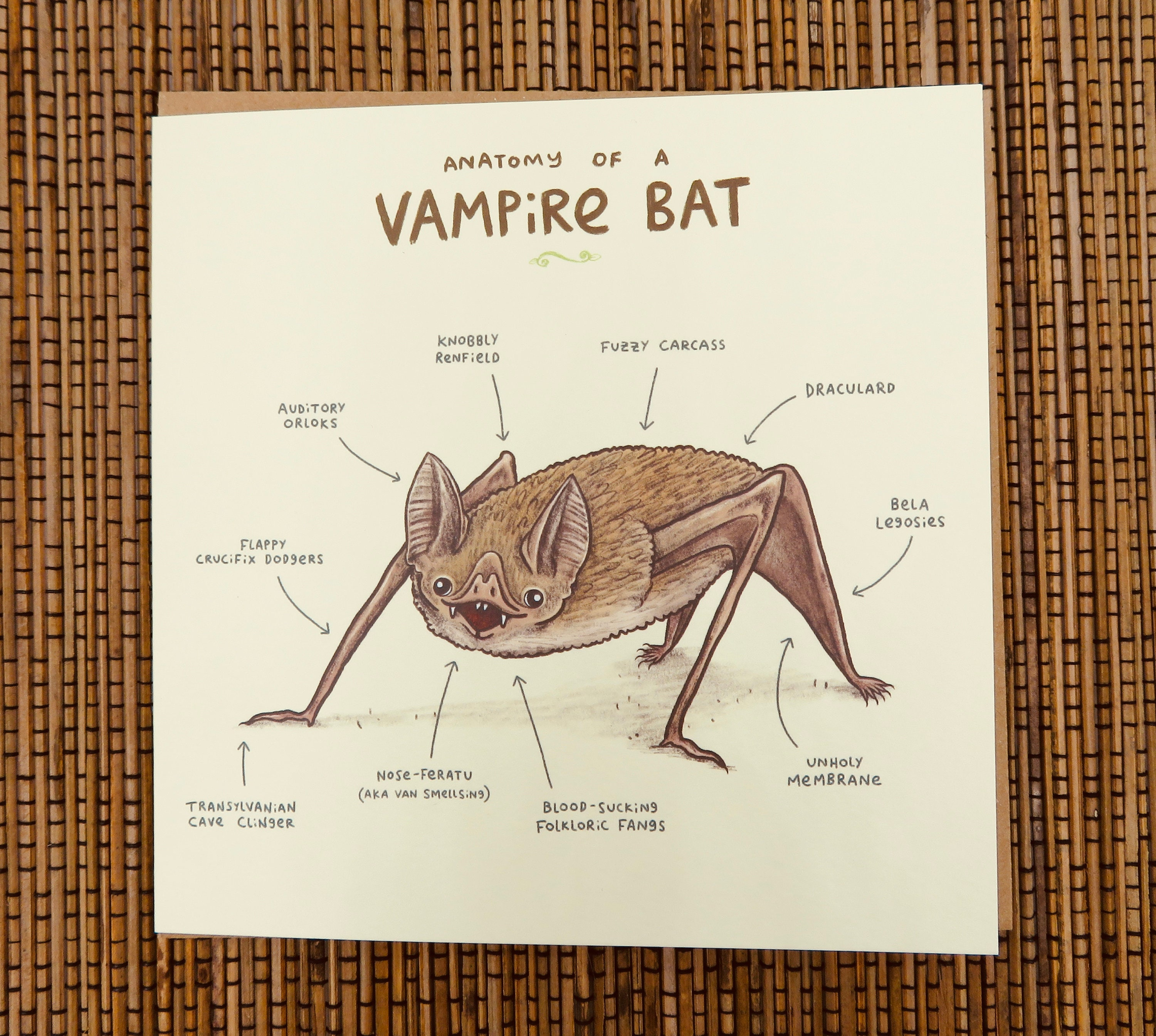 Anatomy Of A Vampire Bat Card | Etsy