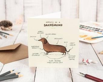 Anatomy Of A Dachshund Card