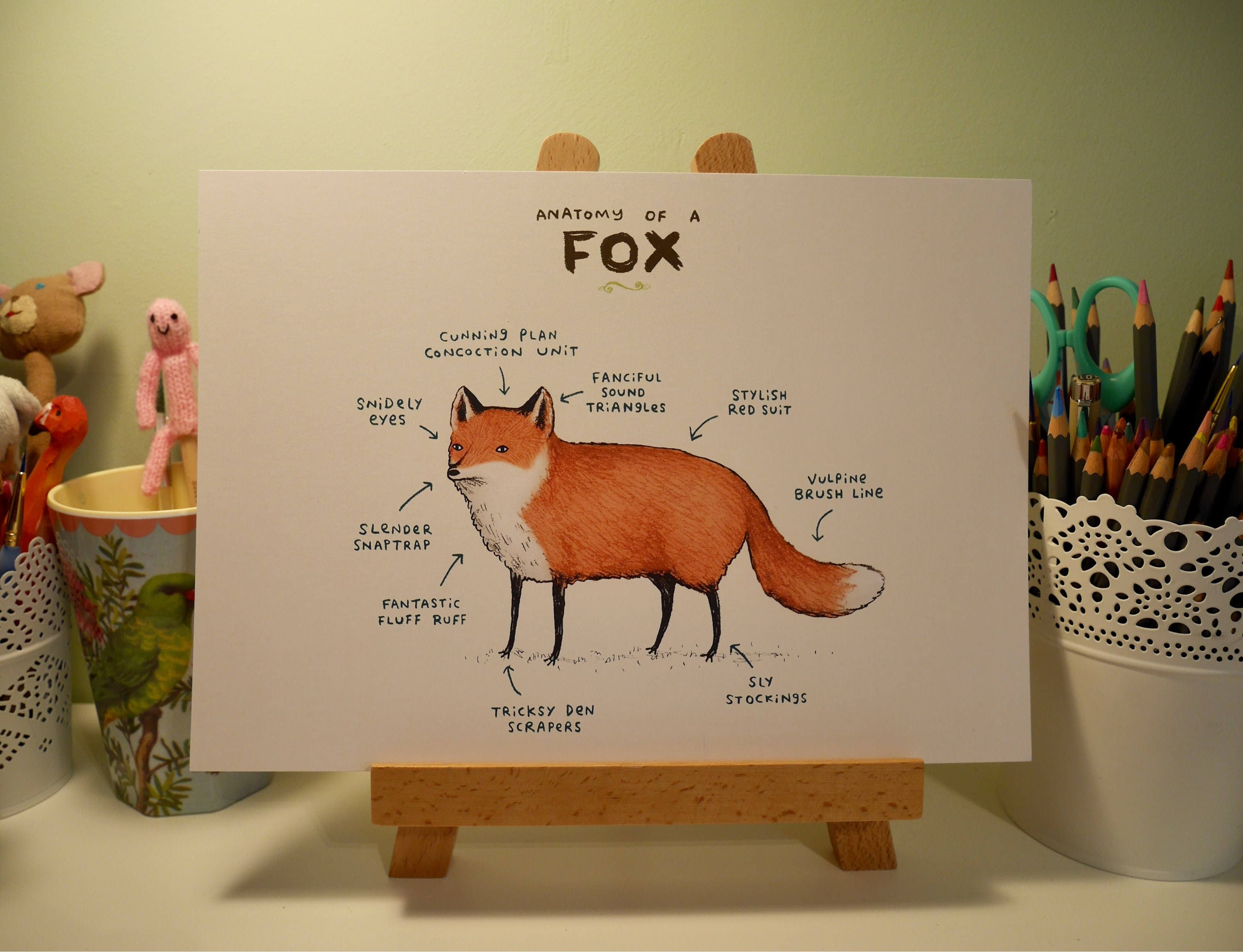 Anatomy Of A Fox A4 Signed Print