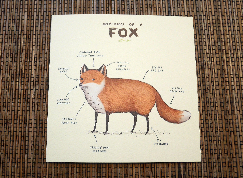 Anatomy Of A Fox Card | Etsy