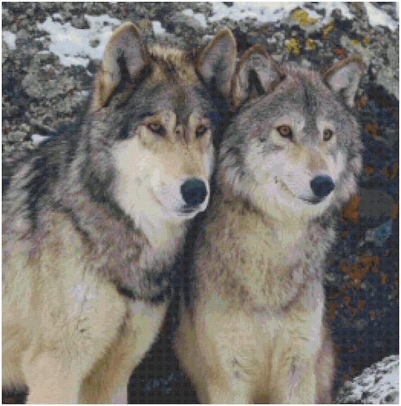Cross Stitch Chart Pattern Indian Couple /& Wolf