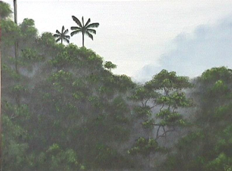 Rainforest Matted Print image 0