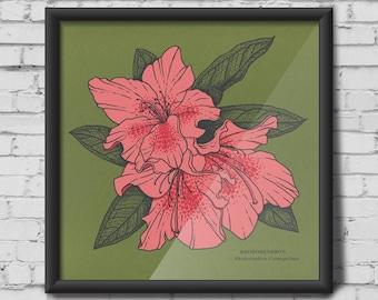 Rhododendron screen print - flower, leaf prints, leaves, rhododendron, plants, flora, botanical print, azalea, pink, green, Illustration