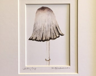 Inky Cap Mushroom Double-Matted Watercolor Pencil Drawing Painting PRINT