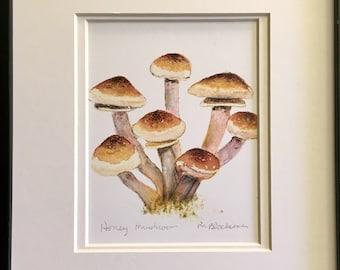 Black Morel Mushroom Double-Matted Watercolor Pencil Drawing Painting PRINT