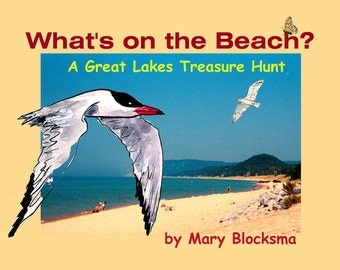 Whats On the Beach   A Great Lakes Treasure Hunt