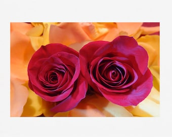 "Two Red Roses - 4"" x 6"" fine art photo in framed foldover notecard"