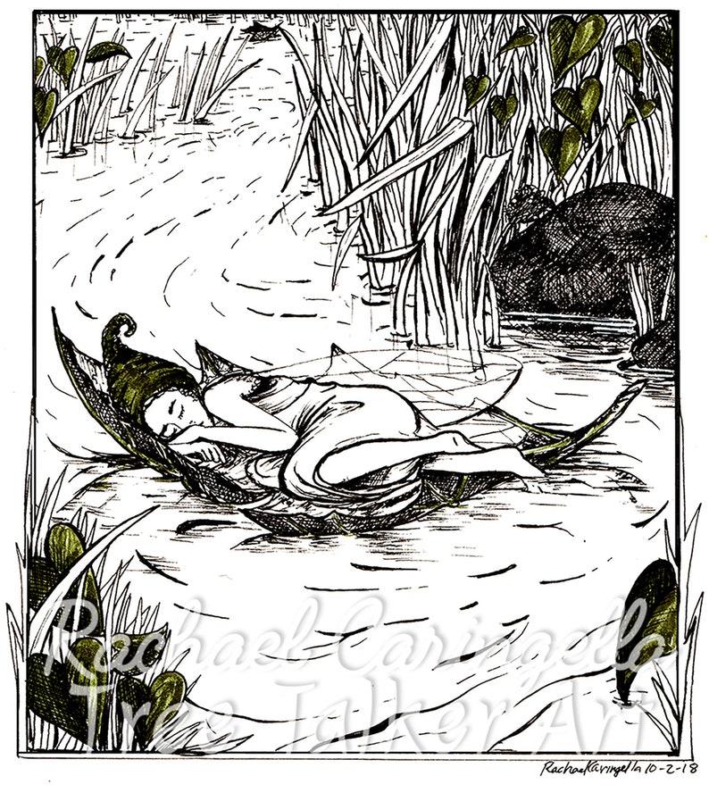 Sleeping Fairy Illustration Fairy on a leaf Art Giclee Fine Art Print Pen and Ink Illustration Artist Rachael Caringella
