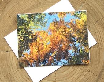 Oktoberfest Autumn 4 blank greeting cards