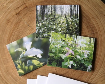 Trilliums - 3 blank note cards