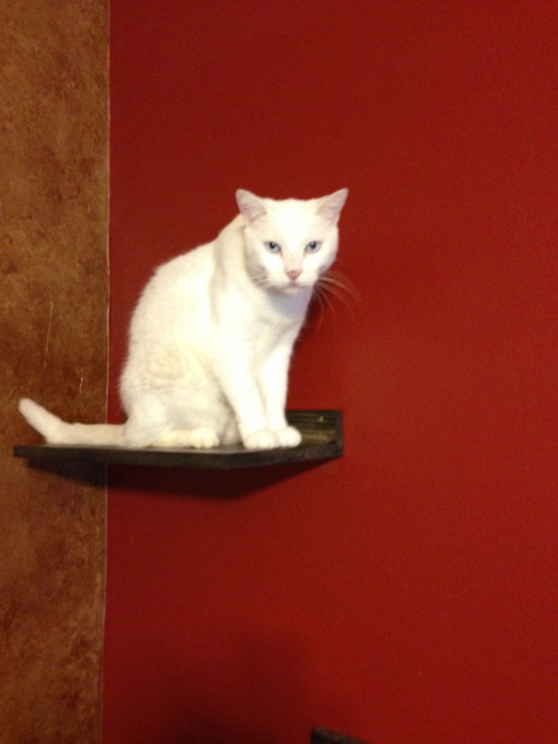 Pet Supplies Set of TWO Cat Climbing Shelves Cat Climbing Cat Toy Cat Shelf Pet Gifts Cat Exercise Pet Furniture Cat Perch