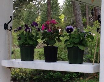 Plant Shelf, Flower Shelf, Herb Shelf, Rustic Wood Shelf, Rustic Flower Shelf, Wood Decor, Home Decor, Shabby Chic, Cottage Deco