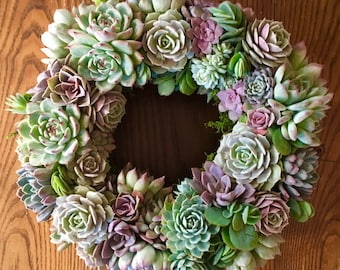 Multiple sizes, Succulent Pastel Wreath, Succulent Front Door Wreath, Living Succulent Wreath, Mother's Day Wreath, Succulent Gift
