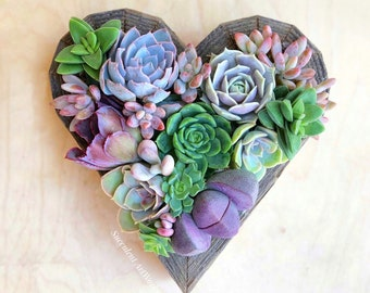succulents in heart shape, vertical garden, succulent planter, Christmas gift, girlfriend gift, holiday gift, wall decor, bereavement gift