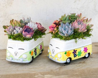 VW Bus, Succulent arrangement, hippy van, retro decor, tabletop decor, girlfriend gift, birthday gift, garden gift, succulent gift