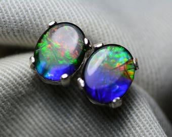 Ammolite Earrings, Ammolite Stud Earrings, Sterling Silver, 10x8mm Oval Cabochon, Alberta Canada Jewelry Jewellery, Pair #55