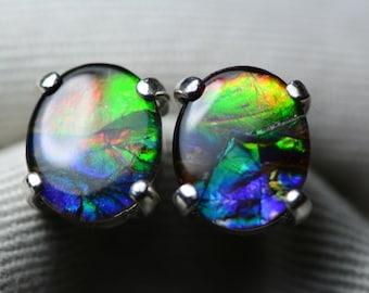Ammolite Earrings, Rainbow Ammolite Stud Earrings, Sterling Silver, 11x9mm Oval Cabochon, Alberta Canada Jewelry Jewellery, Pair #72