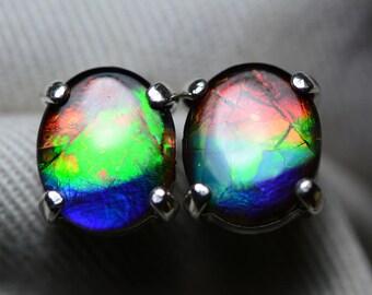 Ammolite Earrings, Rainbow Ammolite Stud Earrings, Sterling Silver, 11x9mm Oval Cabochon, Alberta Canada Jewelry Jewellery, Pair #69
