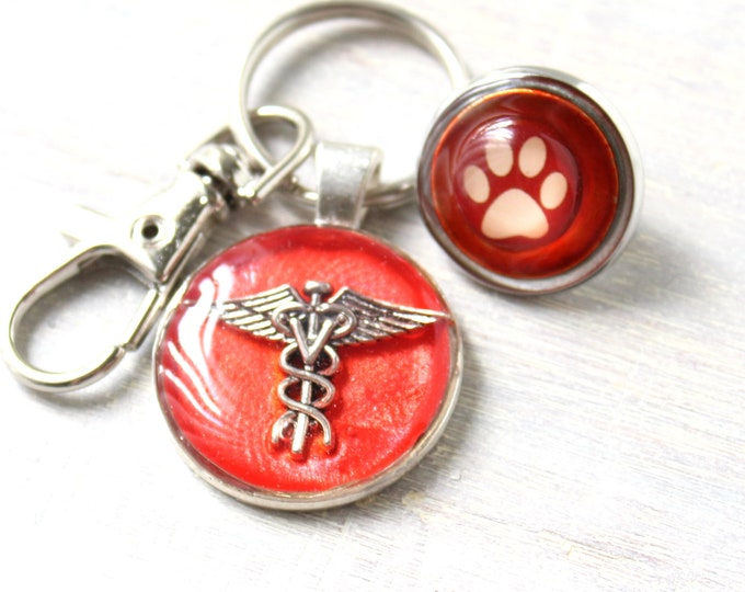 veterinarian keychain and lapel pin gift set